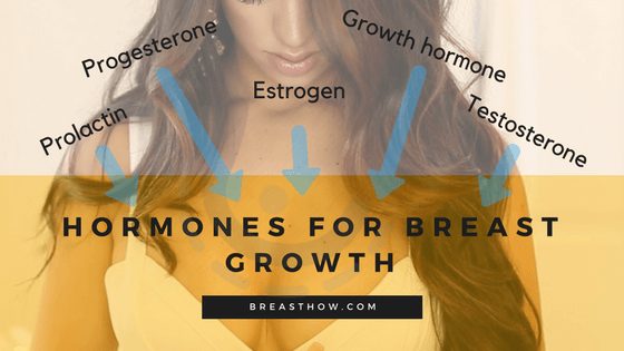 Hormones for Breast Growth