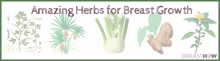 breast enlargement herbs