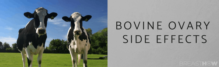 Bovine Ovary Side Effects