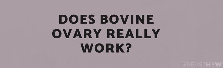 Does Bovine Ovary Really Work